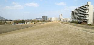 樟葉地区堤防強化工事